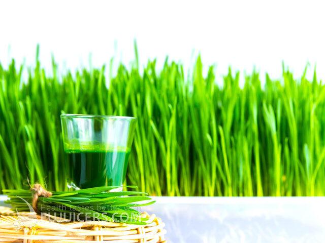 пшеничный сок